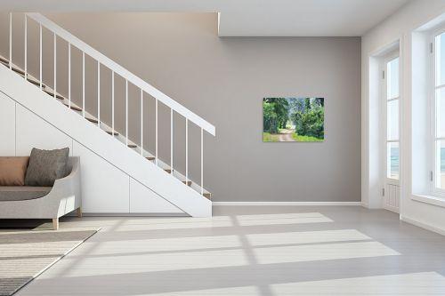 תמונה לחדר מדרגות - נריה ספיר - שביל ביער - מק''ט: 284491