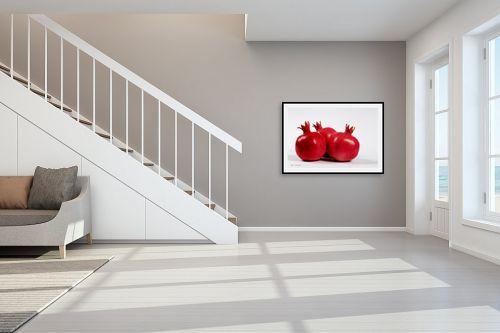 תמונה לחדר מדרגות - קובי פרידמן - רימונים - מק''ט: 31120