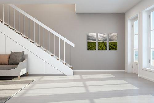 תמונה לחדר מדרגות - אלעד דרור - ריסוס בשעועית - מק''ט: 312944