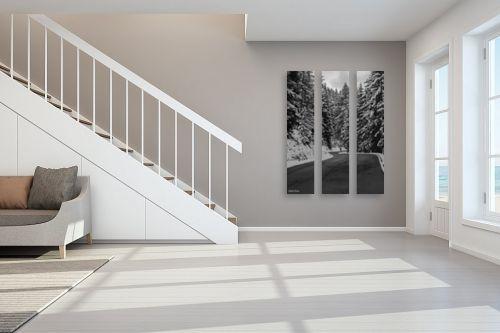 תמונה לחדר מדרגות - אלעד דרור - דרך מושלגת - מק''ט: 312950
