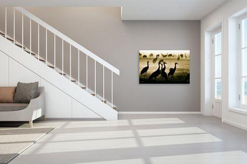 תמונה לחדר מדרגות - אוהד דאיה - צללים - מק''ט: 319534