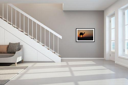 תמונה לחדר מדרגות - ענת שיוביץ - משחקים בכדור שמש - מק''ט: 326516