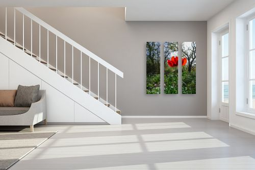 תמונה לחדר מדרגות - ארי בלטינשטר - אדום אדום - מק''ט: 326634