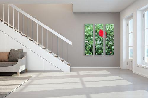 תמונה לחדר מדרגות - ויקטוריה רייגירה - תחושת הרוגע  - מק''ט: 327086