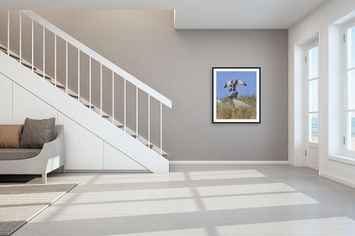 תמונה לחדר מדרגות - כרמל תדמור - צמד חיוואים - מק''ט: 329301