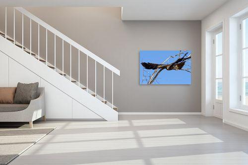 תמונה לחדר מדרגות - אבנר ירון - דיות בבארי 2 - מק''ט: 335414