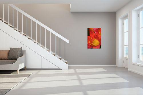 תמונה לחדר מדרגות - שרית סלימן - עדין - מק''ט: 37196
