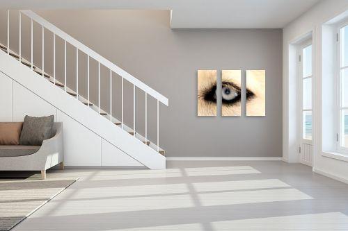 תמונה לחדר מדרגות - משה יפה - תכול בעיניים - מק''ט: 4300