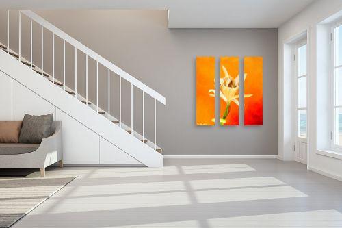 תמונה לחדר מדרגות - איל מלק - קאלה - מק''ט: 44073