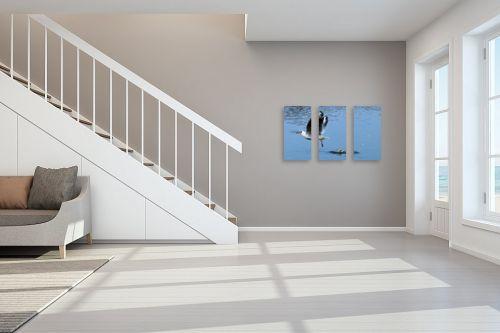תמונה לחדר מדרגות - קובי פרידמן - שחף - מק''ט: 47348