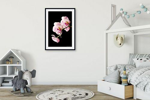 תמונה לחדר ילדים - שרית סלימן - סחלבים ורודים - מק''ט: 101216