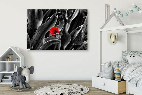 תמונה לחדר ילדים - ארי בלטינשטר - צבע אדום - מק''ט: 309634