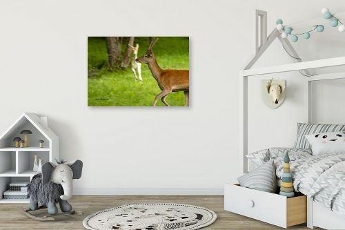 תמונה לחדר ילדים - ענת שיוביץ - יופי פראי - מק''ט: 319557