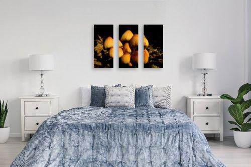 תמונה לחדר שינה - משה יפה - גבעת פטריות - מק''ט: 175205