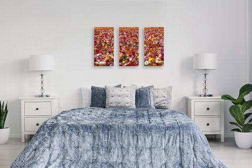 תמונה לחדר שינה - שרית סלימן - שלל נוריות - מק''ט: 177143