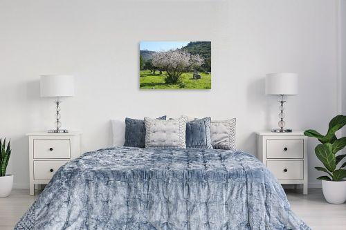 תמונה לחדר שינה - ארי בלטינשטר - שקדייה בכרמל - מק''ט: 223174