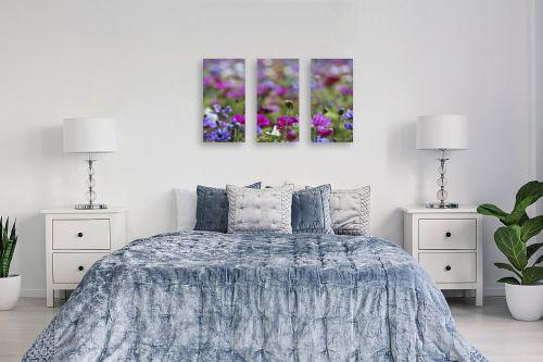 תמונה לחדר שינה - אורלי גור - כלניות בשלל צבעים 1 - מק''ט: 280708