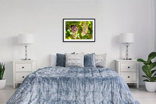 תמונה לחדר שינה - טניה קלימנקו - אשכול ענבים - מק''ט: 285829