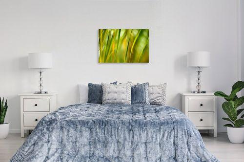 תמונה לחדר שינה - אורית גפני - רוח אביבית - מק''ט: 299745