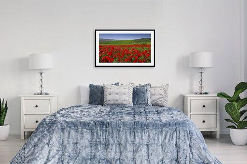 תמונה לחדר שינה - אורי ברוך - שדות פרג לנצח - מק''ט: 300152