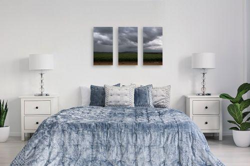 תמונה לחדר שינה - אלעד דרור - שדה חיטה ביום גשם - מק''ט: 313046