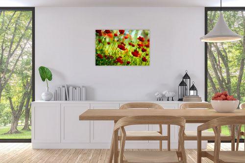תמונה לפינת אוכל - אורית גפני - אביב בירוק אדום - מק''ט: 300573