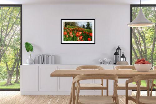 תמונה לפינת אוכל - אורית גפני - צבע בטבע 1 - מק''ט: 314671