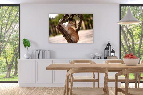 תמונה לפינת אוכל - אורלי שטטינר - חתול על גזע עץ - מק''ט: 332018
