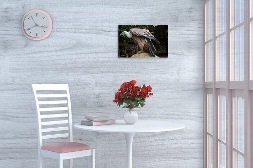 תמונה לפינת אוכל - ענת שיוביץ - golden eagle נשר זהוב - מק''ט: 325208