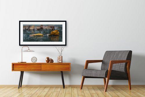 תמונה לחדרי המתנה - שי וייס - שלכת אלונים ביום גשם - מק''ט: 277329