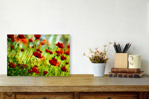 תמונה לשולחן - אורית גפני - אביב בירוק אדום - מק''ט: 300573