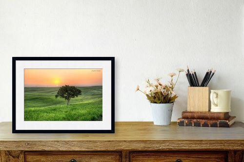 תמונה לשולחן - איזבלה אלקבץ - עץ בודד (HDR) - מק''ט: 304018