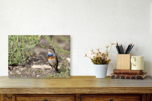 תמונה לשולחן - כרמל תדמור - כחול חזה - מק''ט: 321932