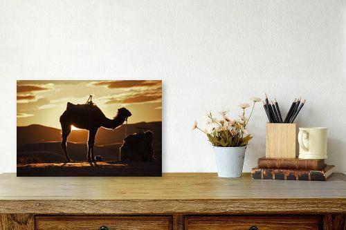 תמונה לשולחן - אורלי שטטינר - גמל בזריחה - מק''ט: 332033