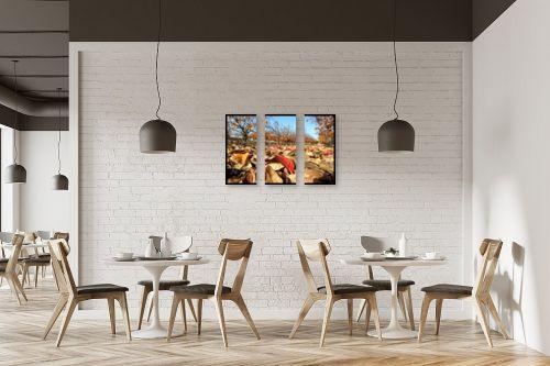 תמונה למסעדה - ארי בלטינשטר - מטע אפרסמון בשלכת - מק''ט: 102221