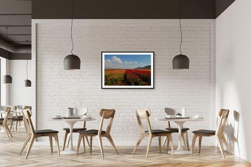 תמונה למסעדה - שוש אבן - פריחה בצבעי הקשת - מק''ט: 113630