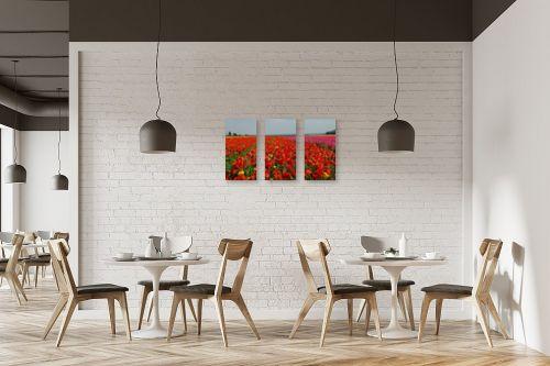 תמונה למסעדה - שוש אבן - נוריות - מק''ט: 122482