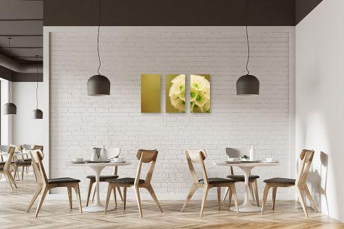 תמונה למסעדה - רן זיסוביץ - כפות - מק''ט: 138573