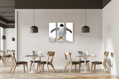 תמונה למסעדה - ענת שיוביץ - ראי,ראי היש בעולם יפה ממנ - מק''ט: 252650
