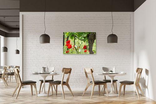תמונה למסעדה - אורי לינסקיל - פרגים בכרם - מק''ט: 301107