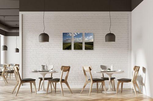 תמונה למסעדה - אלעד דרור - קציר תלתן - מק''ט: 312979