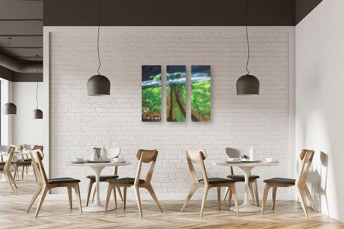 תמונה למסעדה - ורד אופיר - שביל לראש ההר - מק''ט: 333110