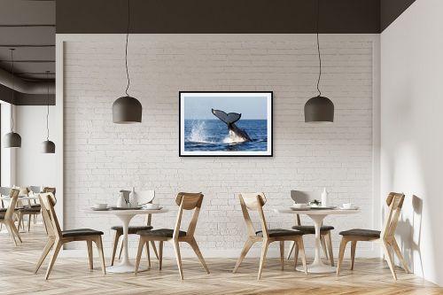 תמונה למסעדה - אבנר ירון - מפרץ ווטומבה 4 - מק''ט: 335273