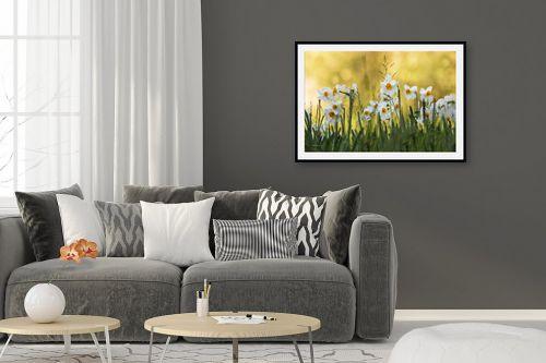 תמונה לסלון - אורית גפני - נרקיסים בשעת הזהב - מק''ט: 270345