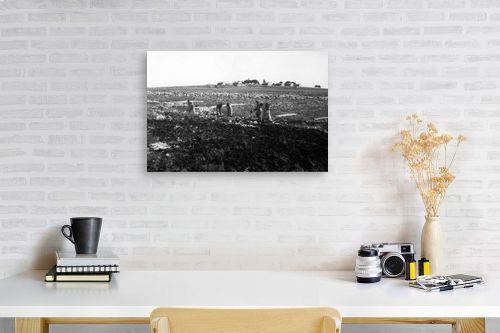 תמונה לפינת עבודה - דוד לסלו סקלי - כפר עציון 1946 הכשרת קרקע - מק''ט: 144267