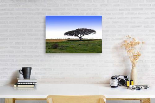 תמונה לפינת עבודה - קובי פרידמן - עץ השדה - מק''ט: 19600