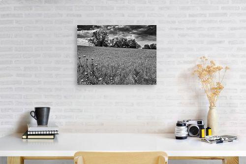 תמונה לפינת עבודה - ארי בלטינשטר - שדות דגן לנצח - מק''ט: 202759
