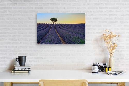 תמונה לפינת עבודה - דורית ברקוביץ - בדד בשדה הלבנדר - מק''ט: 319319