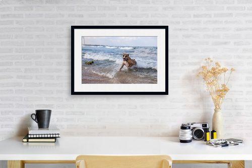 תמונה לפינת עבודה - אור פריאס - כלבת ים - מק''ט: 329449
