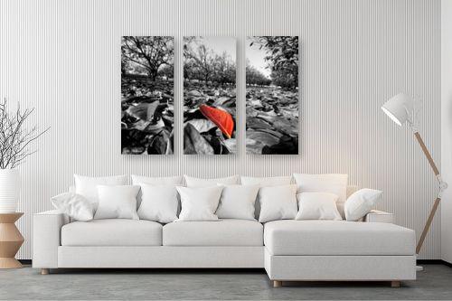 תמונה לסלון - ארי בלטינשטר - צבעי שלכת - מק''ט: 127467